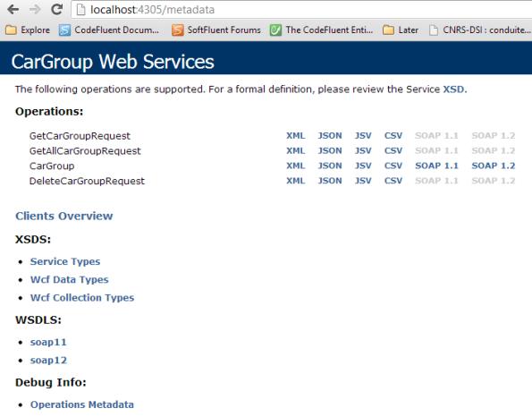 Service metadata information