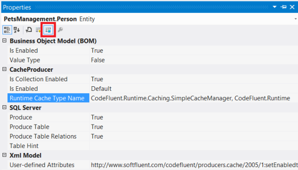 Runtime Cache Type Name
